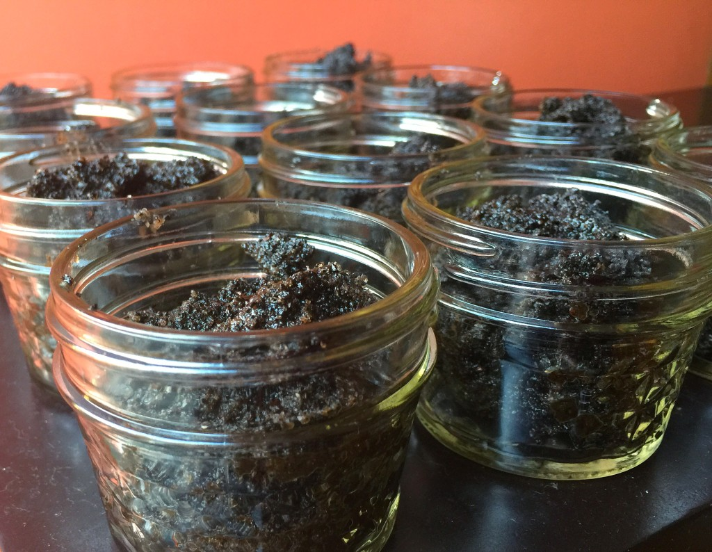 Chicory Coffee Sugar Scrub - Jars
