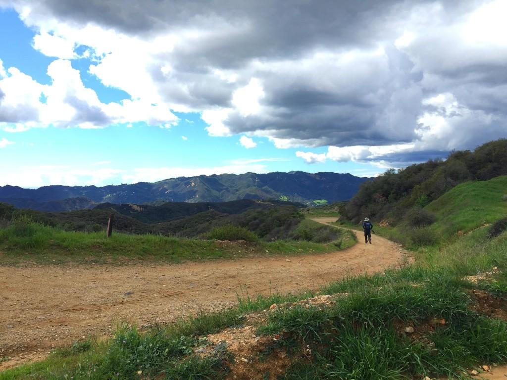Topanga State Park - Hike